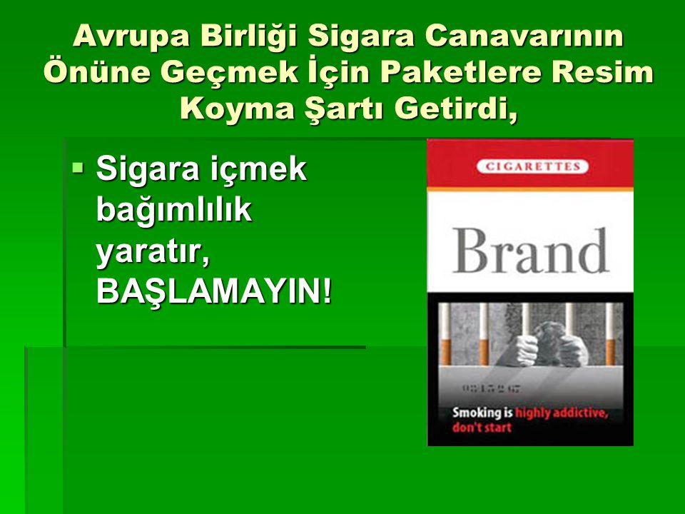 Avrupa Birliği Sigara Canavarının Önüne Geçmek İçin Paketlere Resim Koyma Şartı Getirdi,  Sigara içmek bağımlılık yaratır, BAŞLAMAYIN!