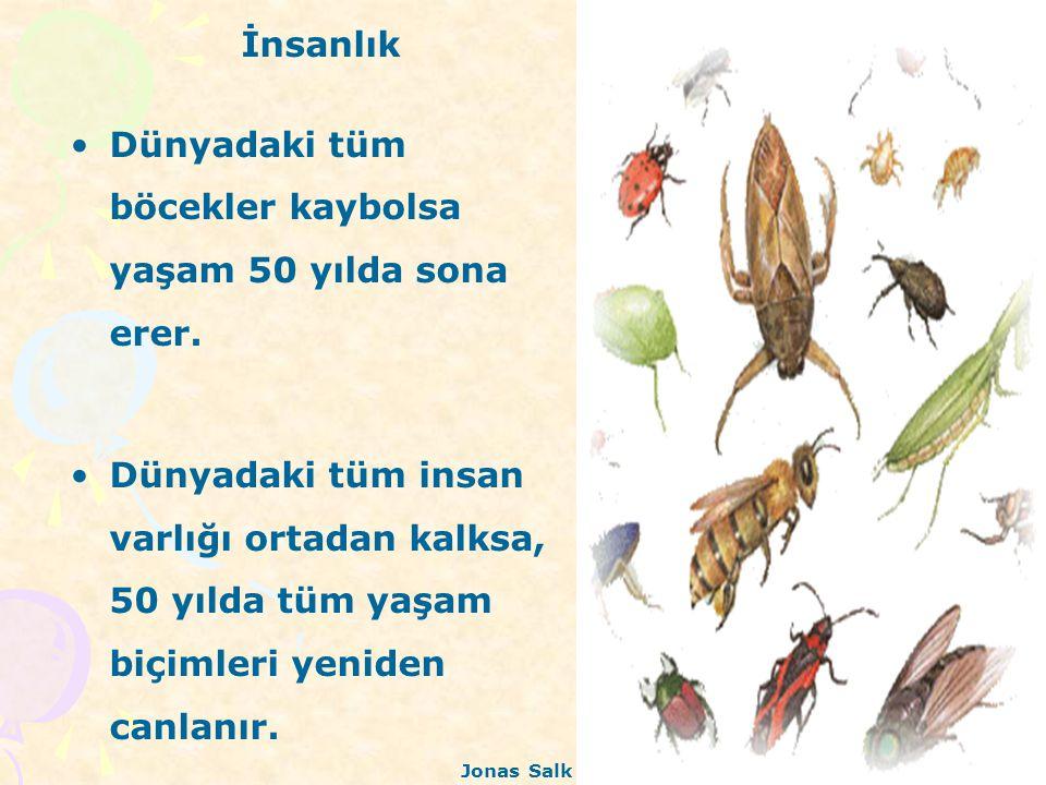 İnsanlık Dünyadaki tüm böcekler kaybolsa yaşam 50 yılda sona erer. Dünyadaki tüm insan varlığı ortadan kalksa, 50 yılda tüm yaşam biçimleri yeniden ca