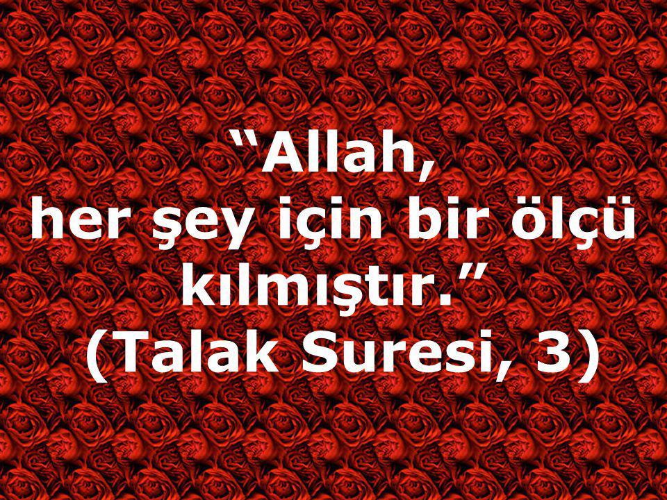 """""""Allah, her şey için bir ölçü kılmıştır."""" (Talak Suresi, 3)"""