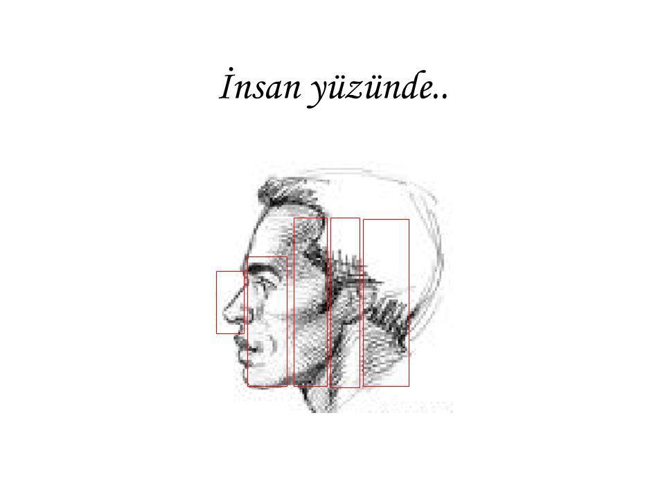 İnsan yüzünde..
