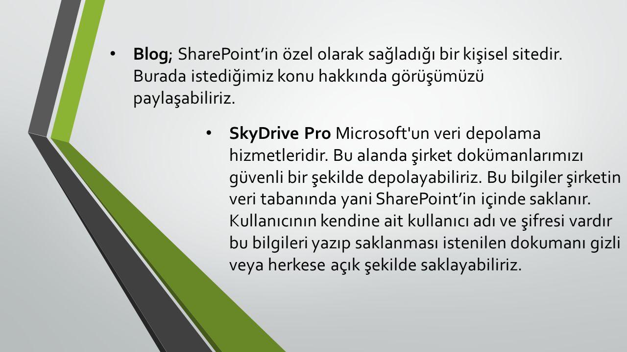 Blog; SharePoint'in özel olarak sağladığı bir kişisel sitedir.