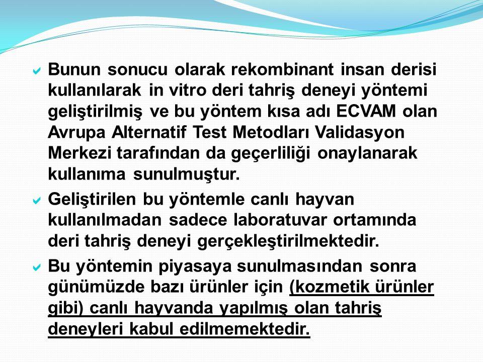  Bunun sonucu olarak rekombinant insan derisi kullanılarak in vitro deri tahriş deneyi yöntemi geliştirilmiş ve bu yöntem kısa adı ECVAM olan Avrupa