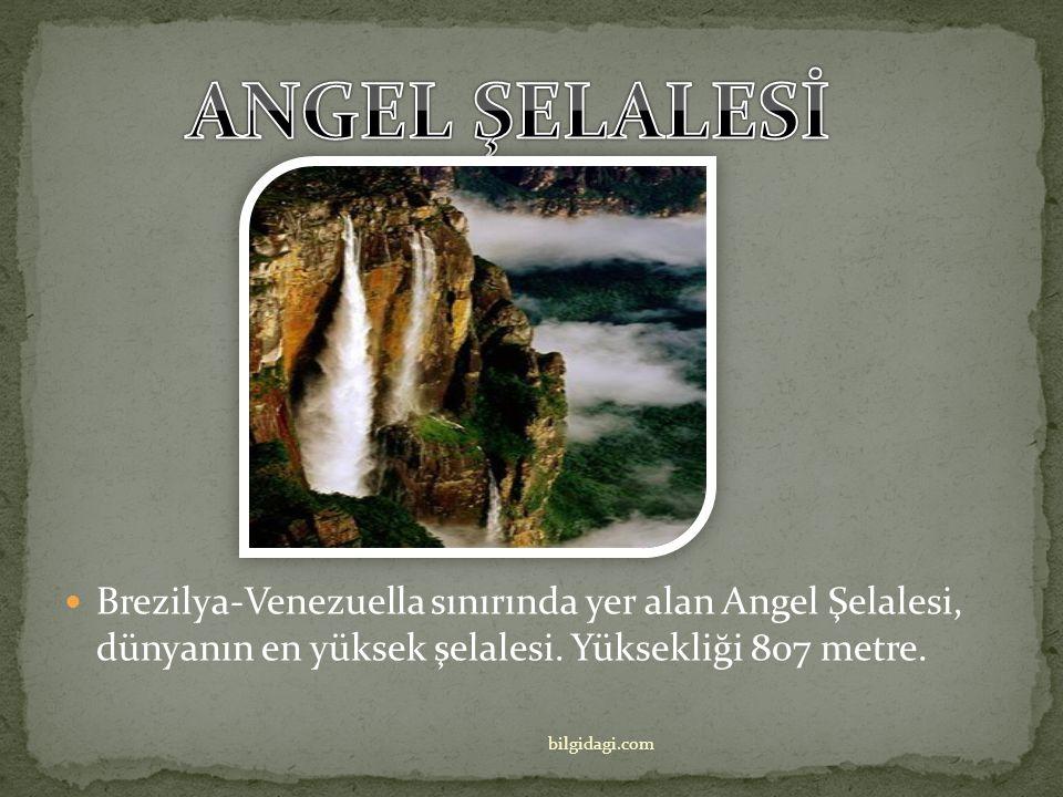 Porto Rico'daki El Yunque Ulusal Ormanı, Kuzey Amerika Orman Sistemi içindeki tek tropikal orman… bilgidagi.com