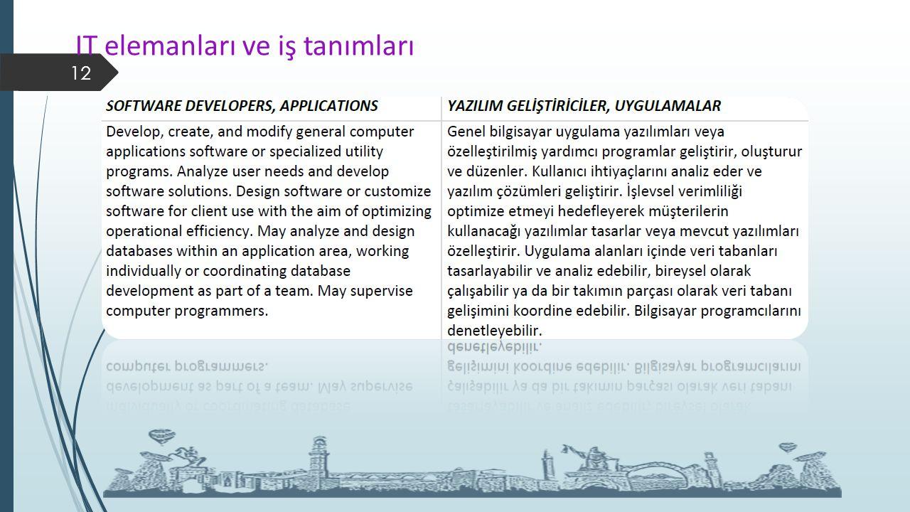 IT elemanları ve iş tanımları 12