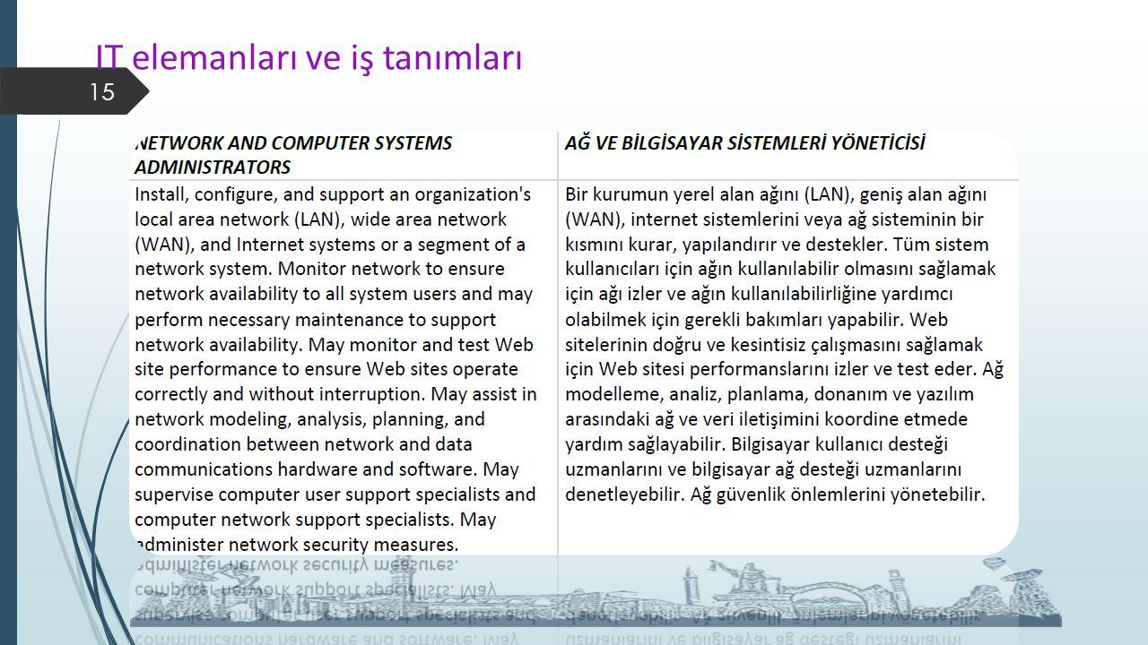 IT elemanları ve iş tanımları 15