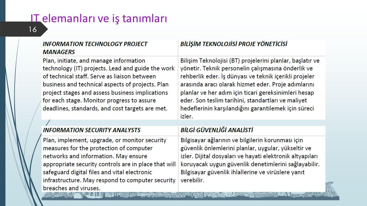 IT elemanları ve iş tanımları 16