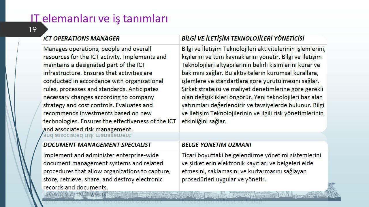 IT elemanları ve iş tanımları 19