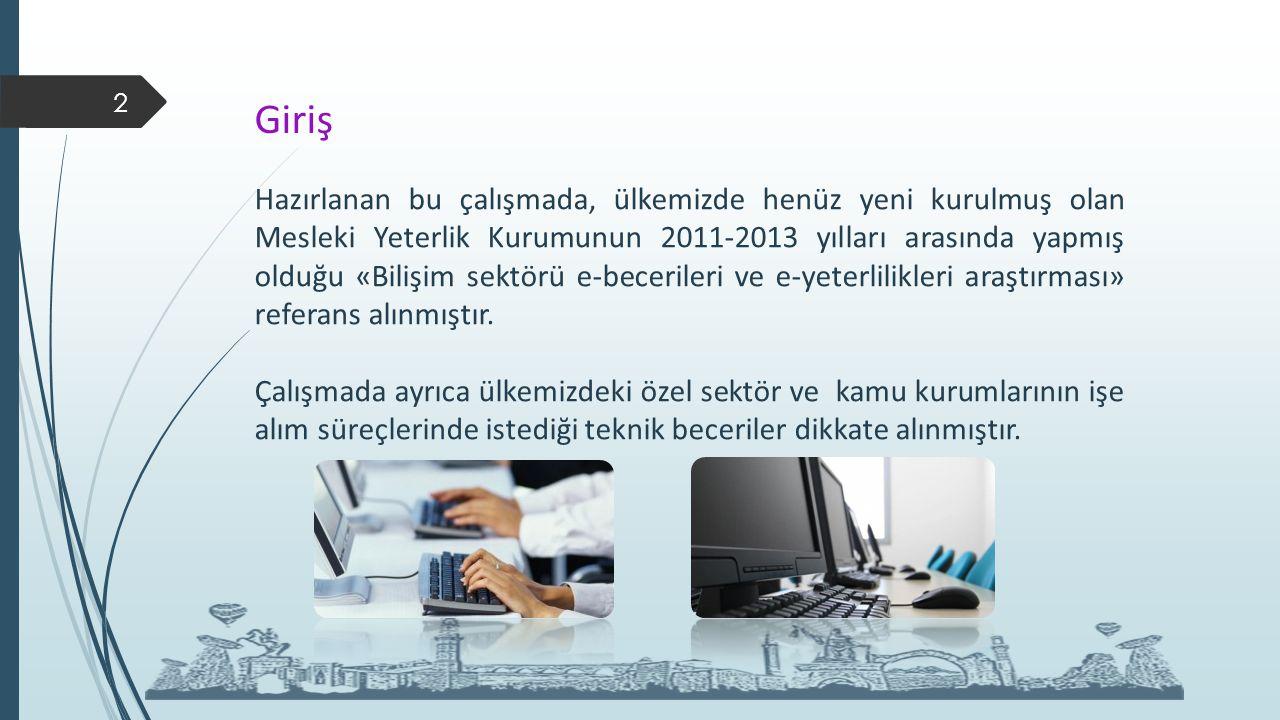 Giriş 2 Hazırlanan bu çalışmada, ülkemizde henüz yeni kurulmuş olan Mesleki Yeterlik Kurumunun 2011-2013 yılları arasında yapmış olduğu «Bilişim sektörü e-becerileri ve e-yeterlilikleri araştırması» referans alınmıştır.