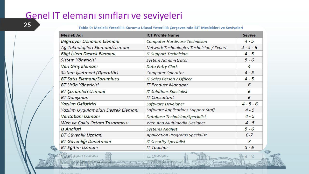 Genel IT elemanı sınıfları ve seviyeleri 25