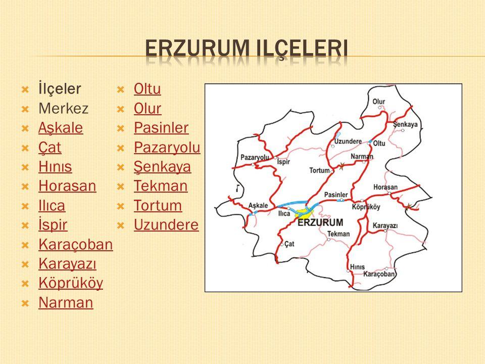 www.egitimedair.net