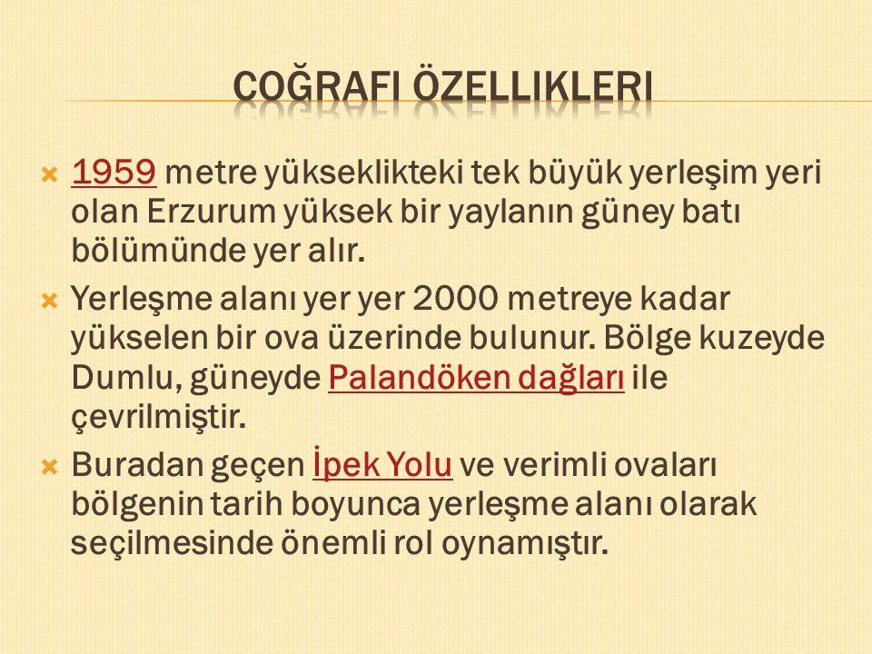  1959 metre yükseklikteki tek büyük yerleşim yeri olan Erzurum yüksek bir yaylanın güney batı bölümünde yer alır.