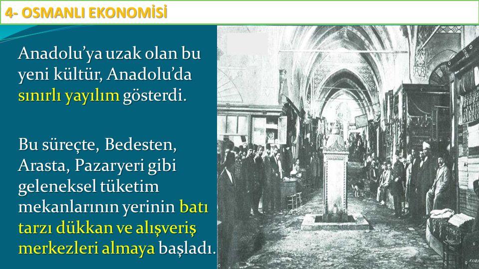 Anadolu'ya uzak olan bu yeni kültür, Anadolu'da sınırlı yayılım gösterdi. Bu süreçte, Bedesten, Arasta, Pazaryeri gibi geleneksel tüketim mekanlarının