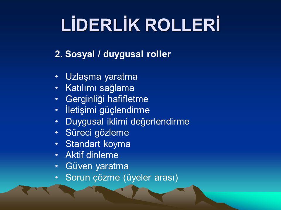 LİDERLİK ROLLERİ 2.