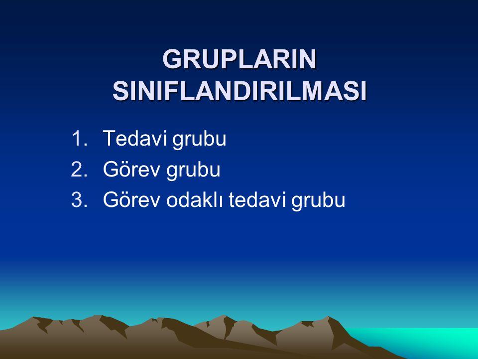 GRUPLARIN SINIFLANDIRILMASI 1.Tedavi grubu 2.Görev grubu 3.Görev odaklı tedavi grubu