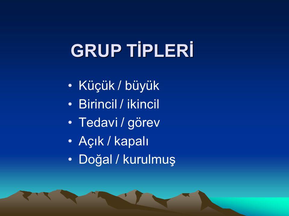 GRUP TİPLERİ Küçük / büyük Birincil / ikincil Tedavi / görev Açık / kapalı Doğal / kurulmuş
