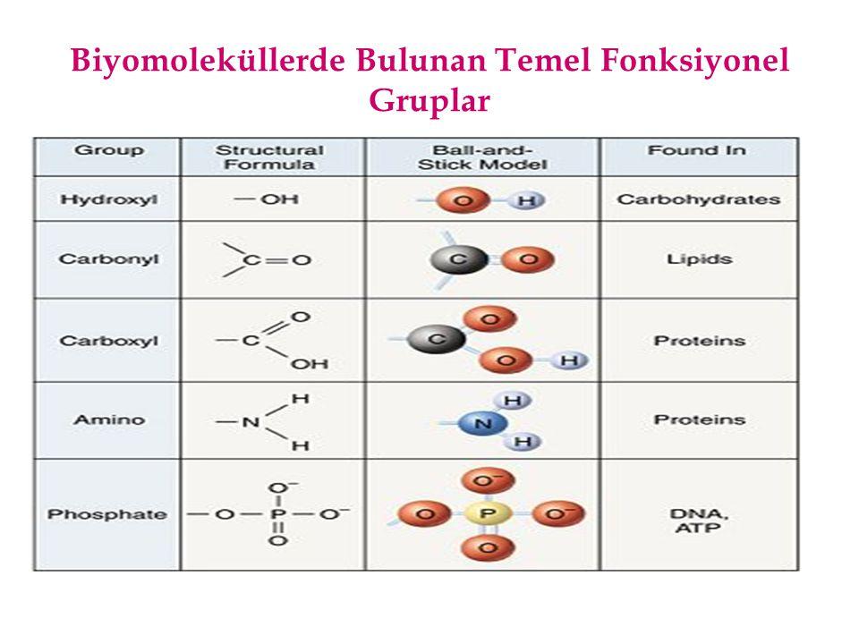 Karboksil Grubu İçeren Biyomoleküller Yağ asitleri: Stearik Asit (Hidrofilik karboksil grubu içerir) Amino asitler: Glisin (Karboksil grubu içerir)