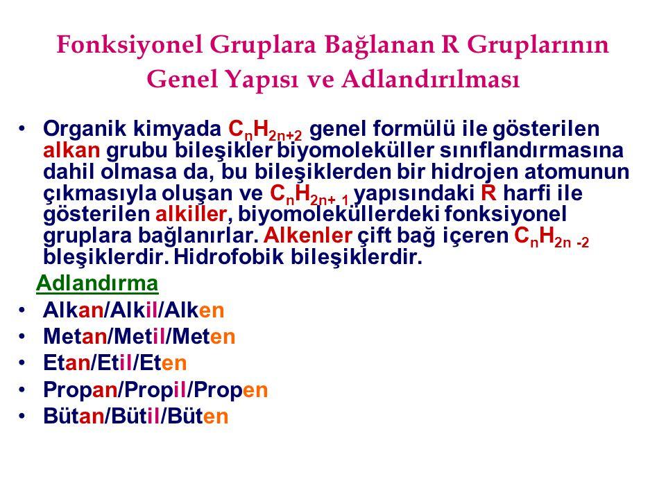 Alkol (Hidroksi-OH) Grubu İçeren Biyomoleküller ATP Glukoz 6-fosfat