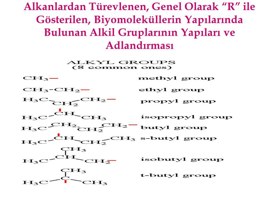 """Alkanlardan Türevlenen, Genel Olarak """"R"""" ile Gösterilen, Biyomoleküllerin Yapılarında Bulunan Alkil Gruplarının Yapıları ve Adlandırması"""
