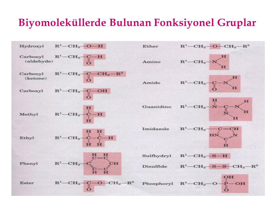 Biyomoleküllerde Bulunan Fonksiyonel Grupların Tanımlanması I Hidroksil grubu: Su molekülündeki bir hidrojen atomu yerine alkil grubunun geçmesiyle oluşur.
