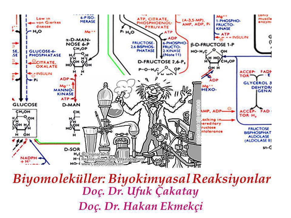 Doç. Dr. Ufuk Çakatay Doç. Dr. Hakan Ekmekçi Biyomoleküller: Biyokimyasal Reaksiyonlar