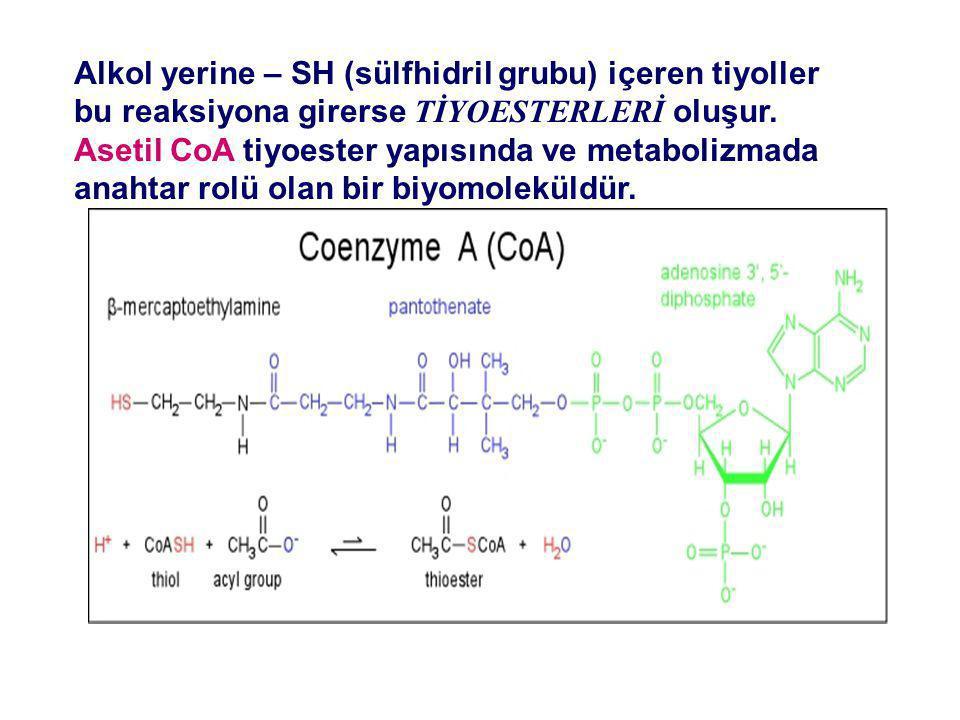 Alkol yerine – SH (sülfhidril grubu) içeren tiyoller bu reaksiyona girerse TİYOESTERLERİ oluşur. Asetil CoA tiyoester yapısında ve metabolizmada anaht