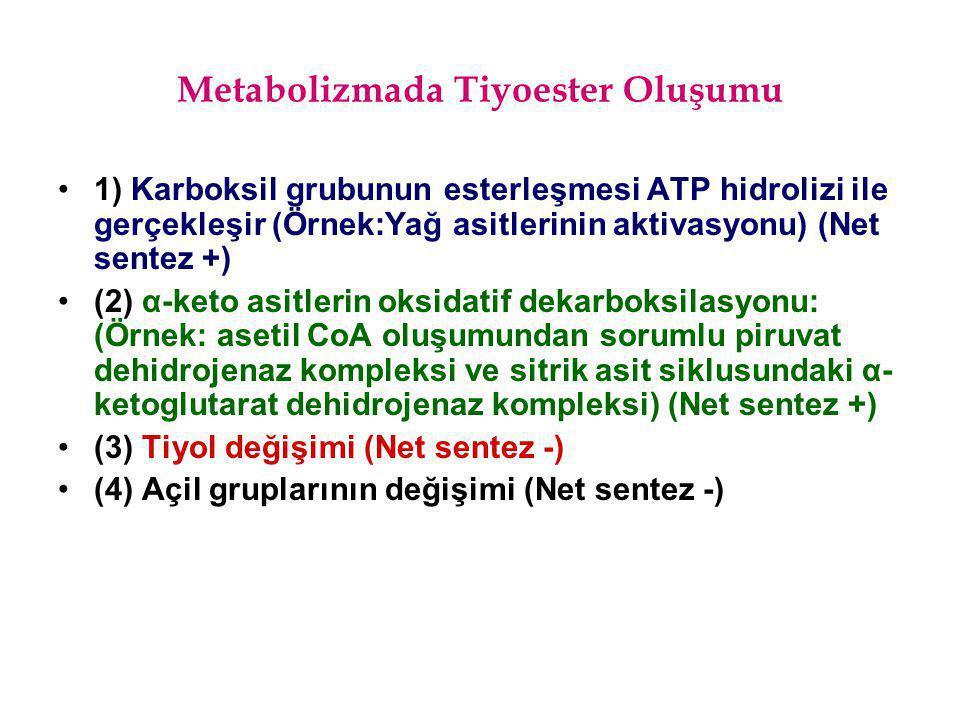 1) Karboksil grubunun esterleşmesi ATP hidrolizi ile gerçekleşir (Örnek:Yağ asitlerinin aktivasyonu) (Net sentez +) (2) α-keto asitlerin oksidatif dek