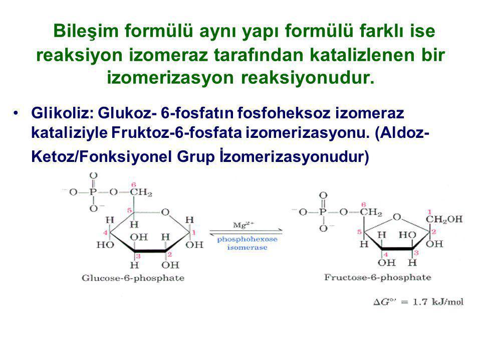 Bileşim formülü aynı yapı formülü farklı ise reaksiyon izomeraz tarafından katalizlenen bir izomerizasyon reaksiyonudur. Glikoliz: Glukoz- 6-fosfatın