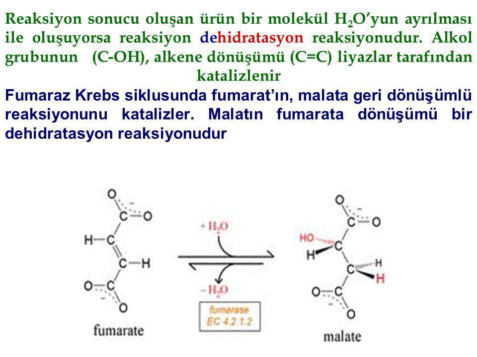 Reaksiyon sonucu oluşan ürün bir molekül H 2 O'yun ayrılması ile oluşuyorsa reaksiyon dehidratasyon reaksiyonudur. Alkol grubunun (C-OH), alkene dönüş