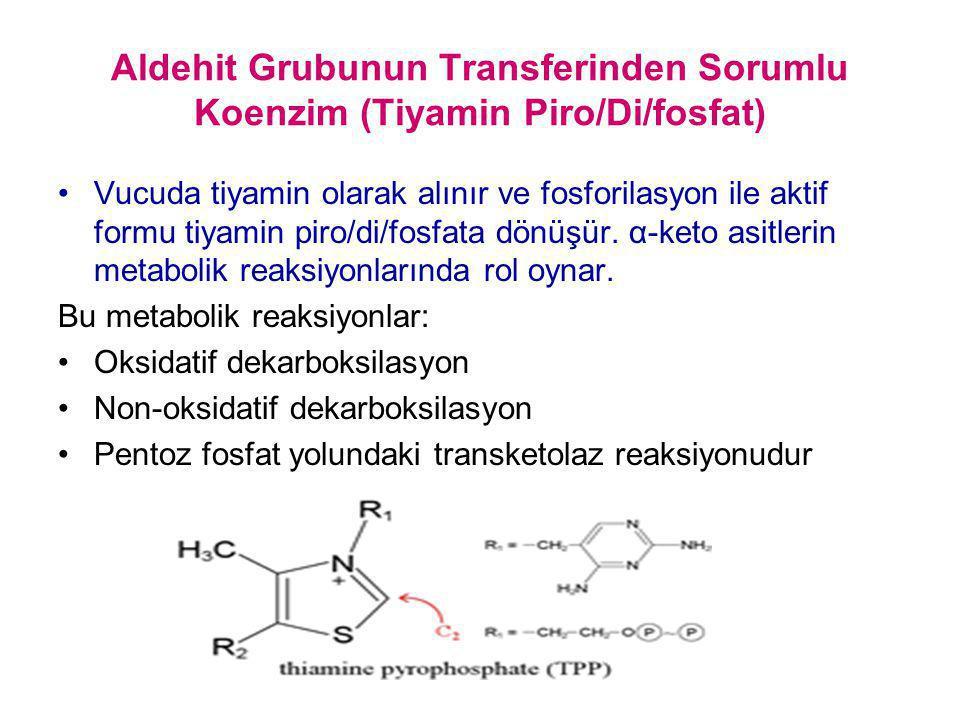 Aldehit Grubunun Transferinden Sorumlu Koenzim (Tiyamin Piro/Di/fosfat) Vucuda tiyamin olarak alınır ve fosforilasyon ile aktif formu tiyamin piro/di/
