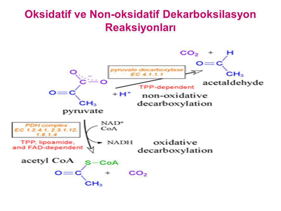 Oksidatif ve Non-oksidatif Dekarboksilasyon Reaksiyonları