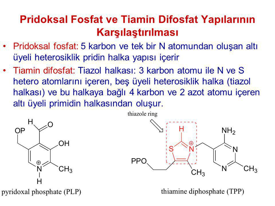 Pridoksal Fosfat ve Tiamin Difosfat Yapılarının Karşılaştırılması Pridoksal fosfat: 5 karbon ve tek bir N atomundan oluşan altı üyeli heterosiklik pri