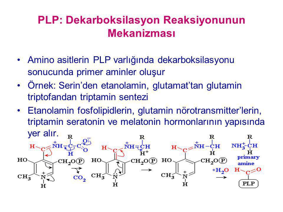 PLP: Dekarboksilasyon Reaksiyonunun Mekanizması Amino asitlerin PLP varlığında dekarboksilasyonu sonucunda primer aminler oluşur Örnek: Serin'den etan