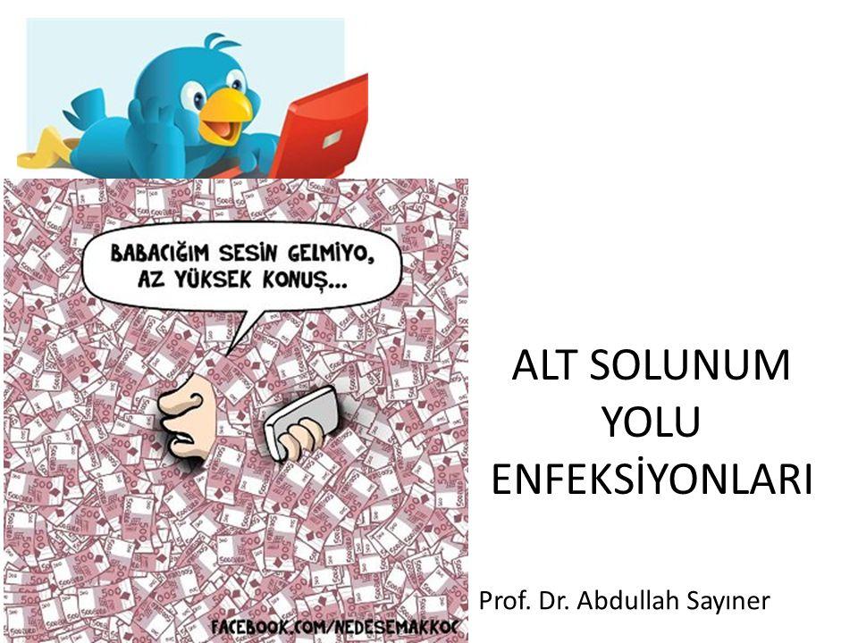 ALT SOLUNUM YOLU ENFEKSİYONLARI Prof. Dr. Abdullah Sayıner