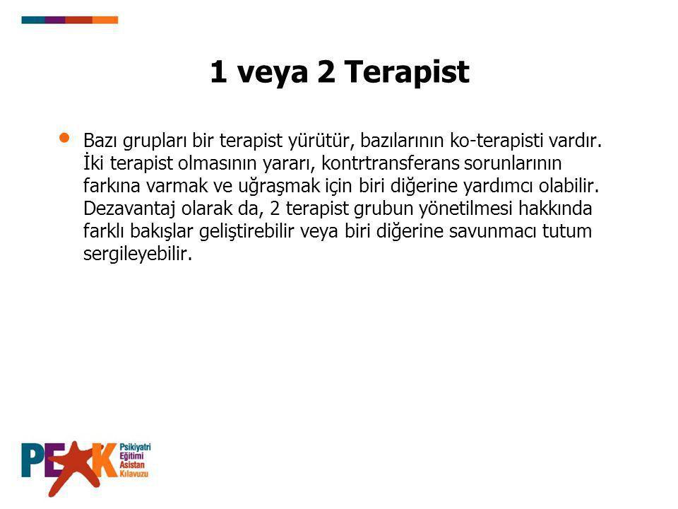 1 veya 2 Terapist Bazı grupları bir terapist yürütür, bazılarının ko-terapisti vardır.
