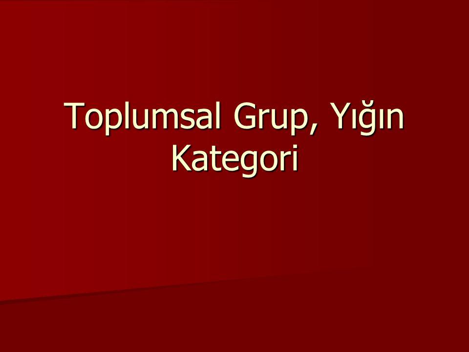 Toplumsal Grup, Yığın Kategori