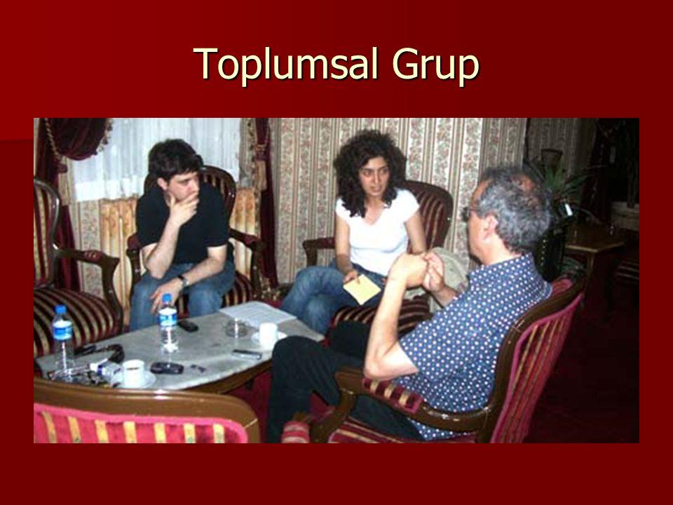 Toplumsal Grup