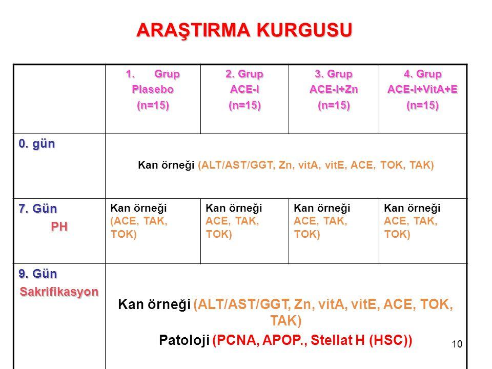 10 1.Grup Plasebo(n=15) 2. Grup ACE-I(n=15) 3. Grup ACE-I+Zn(n=15) 4. Grup ACE-I+VitA+E(n=15) 0. gün Kan örneği (ALT/AST/GGT, Zn, vitA, vitE, ACE, TOK