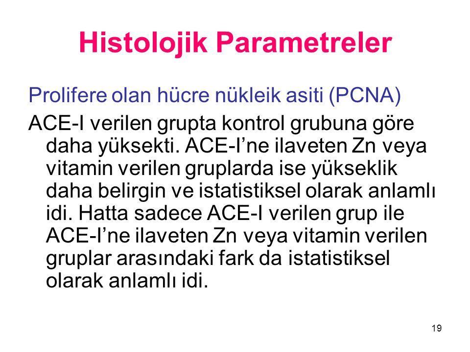 19 Histolojik Parametreler Prolifere olan hücre nükleik asiti (PCNA) ACE-I verilen grupta kontrol grubuna göre daha yüksekti. ACE-I'ne ilaveten Zn vey