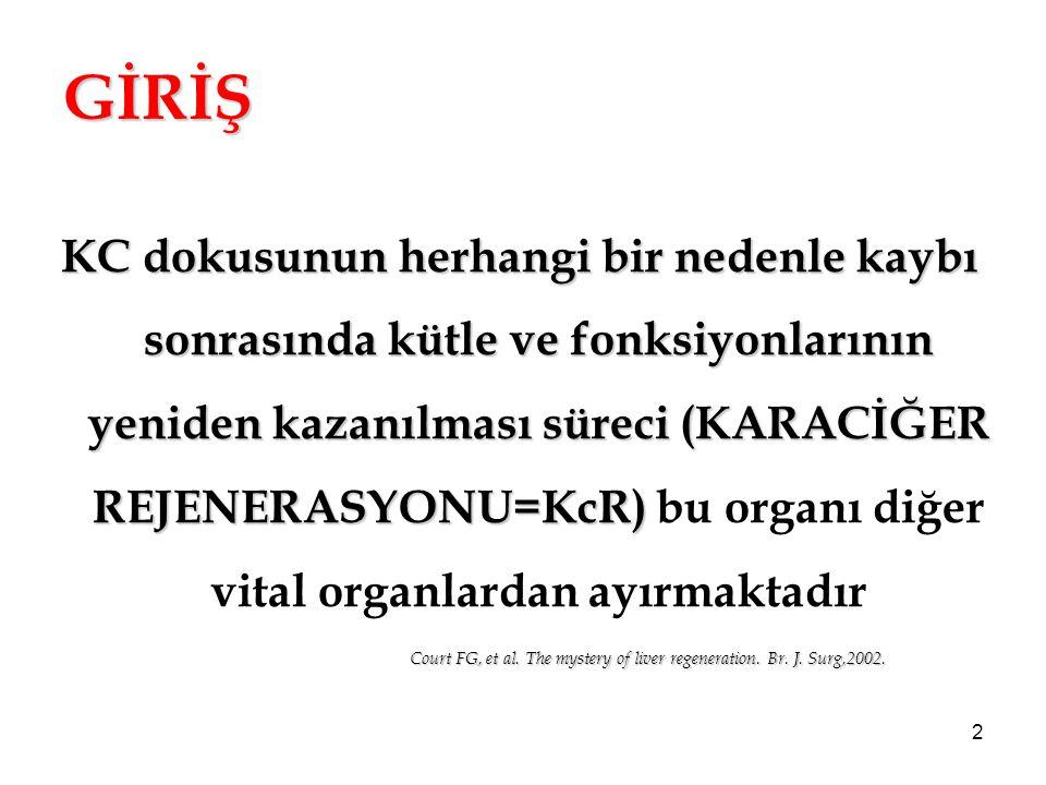 2 GİRİŞ Court FG, et al. The mystery of liver regeneration. Br. J. Surg,2002. KC dokusunun herhangi bir nedenle kaybı sonrasında kütle ve fonksiyonlar
