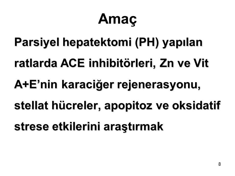 Amaç Parsiyel hepatektomi (PH) yapılan ratlarda ACE inhibitörleri, Zn ve Vit A+E'nin karaciğer rejenerasyonu, stellat hücreler, apopitoz ve oksidatif