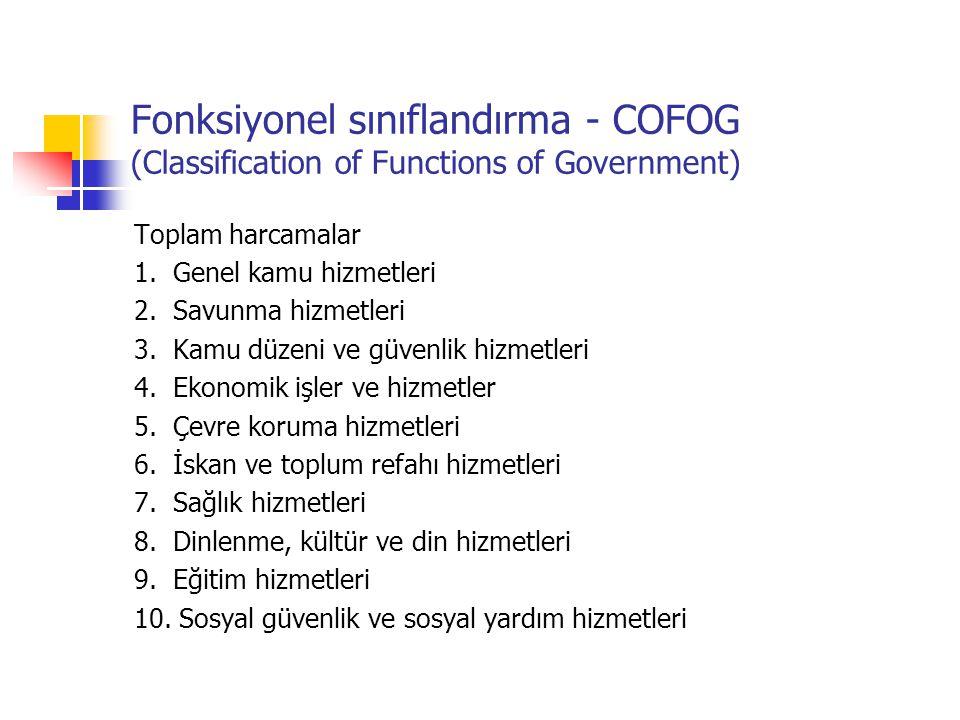 Devlet harcamaları kalemlerinin sınıflandırılması: Ekonomik sınıflandırma Fonksiyonel sınıflandırma (COFOG)