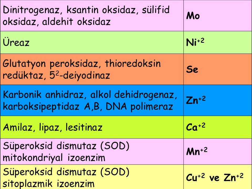 Dinitrogenaz, ksantin oksidaz, sülifid oksidaz, aldehit oksidaz Mo ÜreazNi +2 Glutatyon peroksidaz, thioredoksin redüktaz, 5 2 -deiyodinaz Se Karbonik anhidraz, alkol dehidrogenaz, karboksipeptidaz A,B, DNA polimeraz Zn +2 Amilaz, lipaz, lesitinazCa +2 Süperoksid dismutaz (SOD) mitokondriyal izoenzim Mn +2 Süperoksid dismutaz (SOD) sitoplazmik izoenzim Cu +2 ve Zn +2