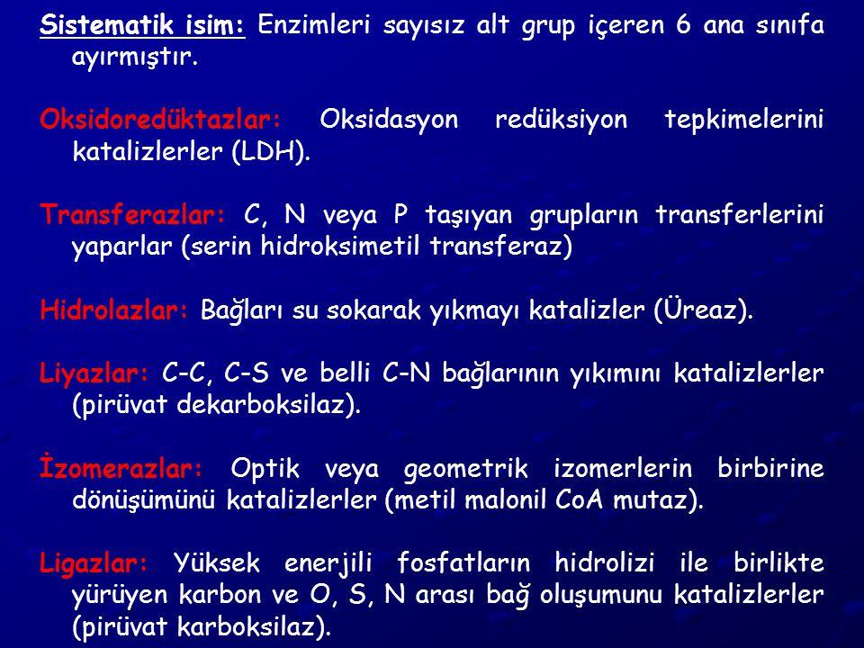 Sistematik isim: Enzimleri sayısız alt grup içeren 6 ana sınıfa ayırmıştır.