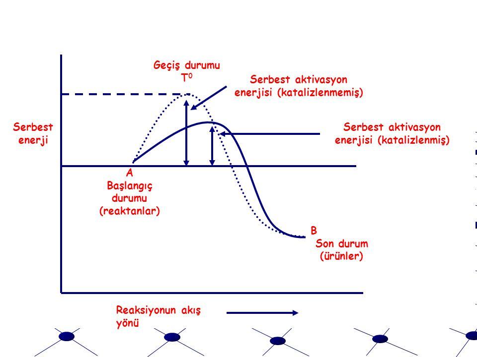 Serbest aktivasyon enerjisi (katalizlenmiş) Geçiş durumu T 0 A Başlangıç durumu (reaktanlar) B Son durum (ürünler) Serbest aktivasyon enerjisi (katalizlenmemiş) Serbest enerji Reaksiyonun akış yönü