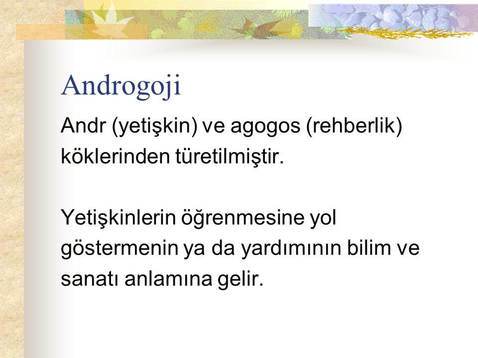 Androgoji Andr (yetişkin) ve agogos (rehberlik) köklerinden türetilmiştir. Yetişkinlerin öğrenmesine yol göstermenin ya da yardımının bilim ve sanatı