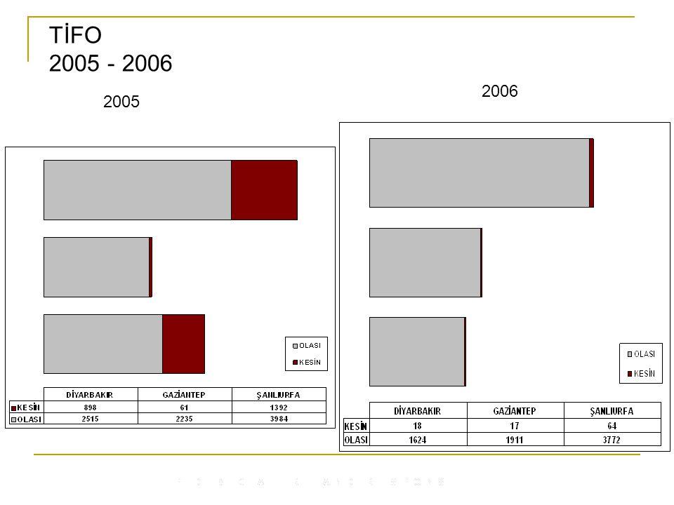 TİFO 2005 - 2006 2005 2006