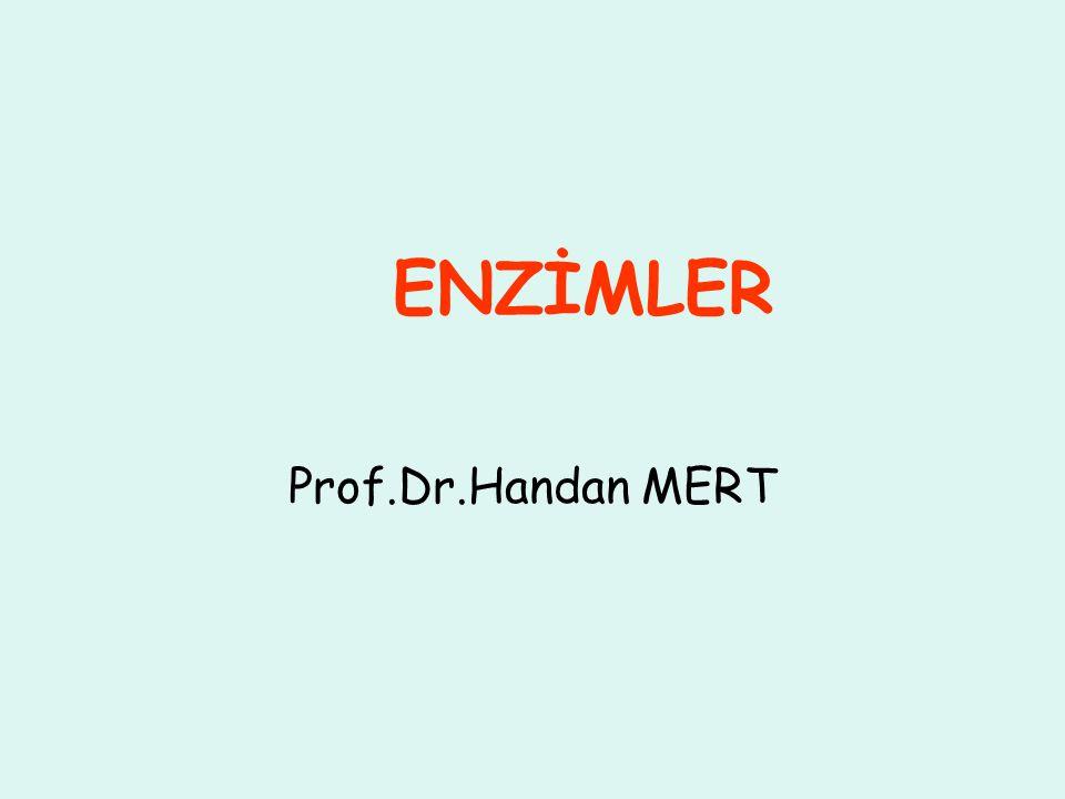 Prof.Dr.Handan MERT ENZİMLER
