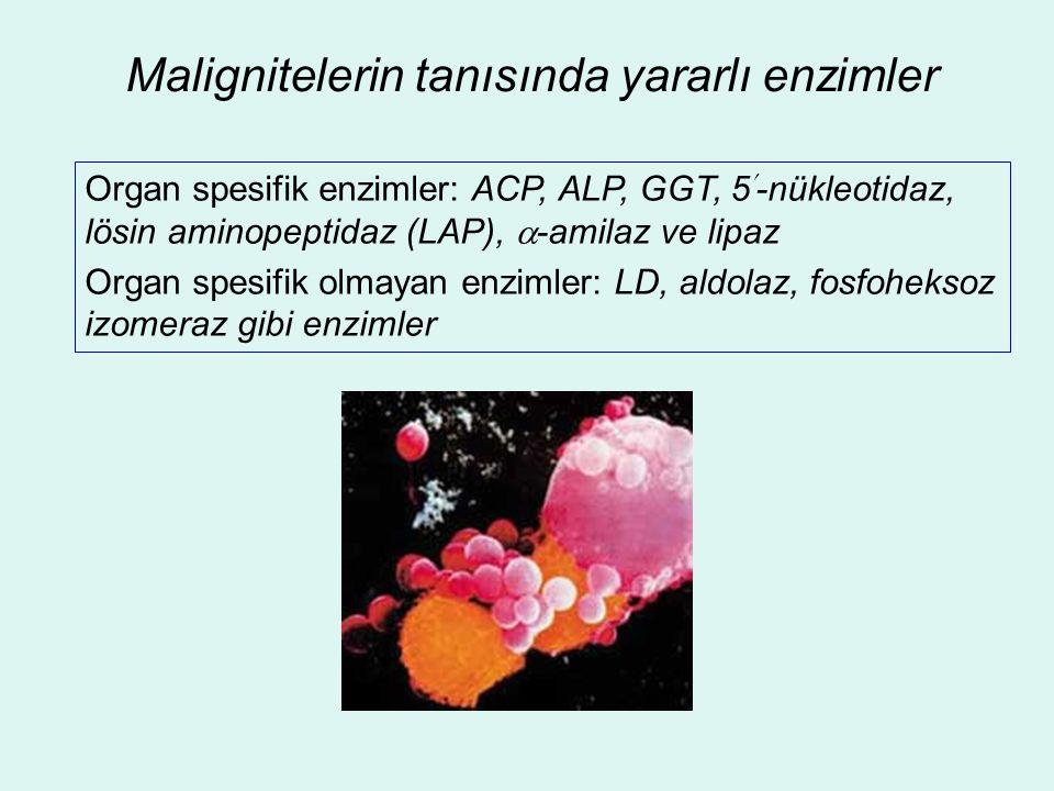 Malignitelerin tanısında yararlı enzimler Organ spesifik enzimler: ACP, ALP, GGT, 5-nükleotidaz, lösin aminopeptidaz (LAP),  -amilaz ve lipaz Organ s