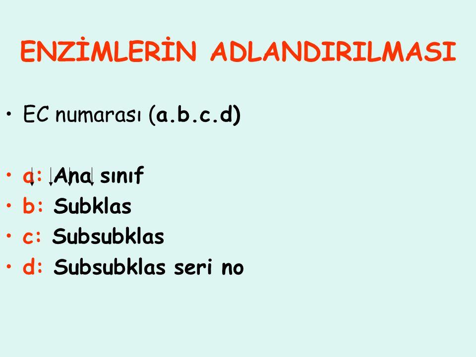 ENZİMLERİN ADLANDIRILMASI EC numarası (a.b.c.d) a: Ana sınıf b: Subklas c: Subsubklas d: Subsubklas seri no
