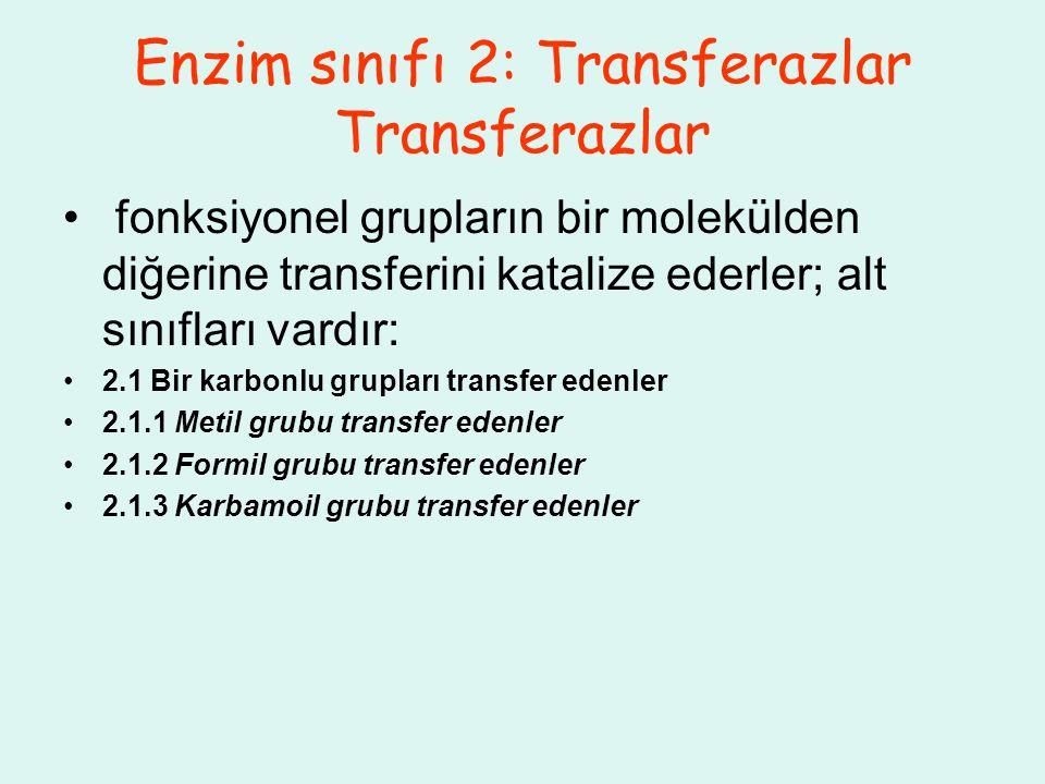 Enzim sınıfı 2: Transferazlar Transferazlar fonksiyonel grupların bir molekülden diğerine transferini katalize ederler; alt sınıfları vardır: 2.1 Bir